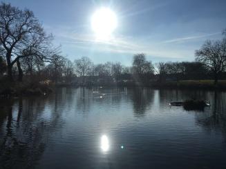 Mount Pond in Clapham Common
